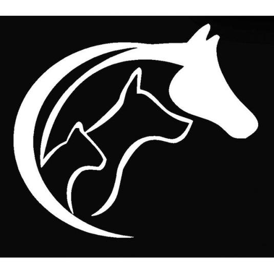 Wholesale-50-pcs-lot-Animal-Lover-Love-Heart-Sticker-Horse-Cat-Dog-For-Car-Window-Truck.jpg_640x640